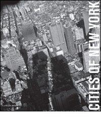 Cities of New York. eBook