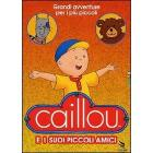 Caillou e i suoi piccoli amici (Cofanetto 2 dvd)