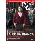 La rosa bianca. Sophie Scholl