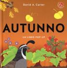 Autunno. Libro pop-up. Ediz. a colori