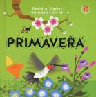 Primavera. Libro pop-up. Ediz. a colori